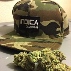 Instagram media by indica_clothing - #wakenbake with newest #indicaclothing #camo #snapback dropping today on indicaclothing.com with the tastiest #cheeseberry #buds .!! #colorado #cali #cdxx #clothing #dank #dope #fashion #mmj #marijuana #nugs #303#719 #710 #420