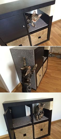 Kallax cat scratching furniture ~ modified cabinet from IKEA's Kallax line (formerly Expedit) ~ sisal rope wrap & climbing wall for claws, cubby for hiding, toy/supply storage below | from IKEA Hackers