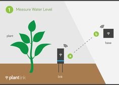 Plant Link: Listen to your plants by Oso Technologies — Kickstarter