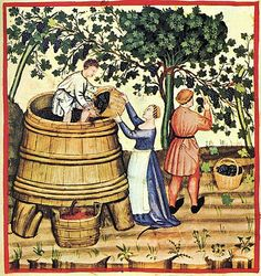 "The Tacuinum (sometimes Taccuinum) Sanitatis is a medieval handbook on health and wellbeing, based on the Taqwim al‑sihha تقويم الصحة (""Maintenance of Health""), an eleventh-century Arab medical treatise by Ibn Butlan of Baghdad."