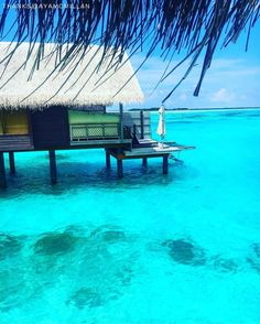 We love the crystal waters of the Maldives so much, we built our villas right on top of them. Can we interest you in the ultimate tropical indulgence? @shangrilamaldives : @ayamcmillan. #Shangrilahotels #Shangrilamaldives #Shangrila #maldives #holiday #paradise #view #travel #vacation #wanderlust #adventure #travelgram #instatravel #travelphotography #shimonfly