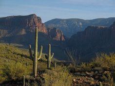 Parker Creek Canyon, Arizona