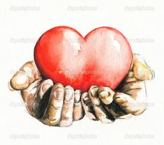 Hands holding heart isolatet on white background.Picture I have created myself with watercolors. Holding Hands Drawing, Hands Holding Heart, Heart Hands Drawing, Blood Donation Posters, Hand Holding Something, Mothers Day Drawings, Heart Sketch, Heart Painting, Baby Tattoos