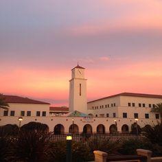 74 Best SDSU Campus images