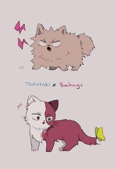 [Dog] Bakugou Katsuki & [Cat] Todoroki Shouto