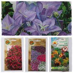 Spokojny Dom - blog o rodzinie, roslinach i moich wartościach.: Co siać w marcu? Warzywa i kwiaty z nasion.  nasiona kwiaty warzywa siać ogród warzywnik owoce homestead