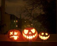 pumpkins-this-year.jpg (1024×842)