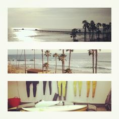 Boardwalk, palm trees and wetsuits