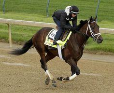 Exercise rider Hector Ramos rides Kentucky Derby entrant Outwork. (AP)
