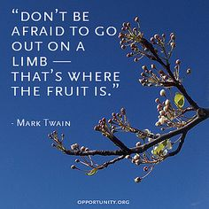 Amazing quote by #MarkTwain. Go out on a limb.