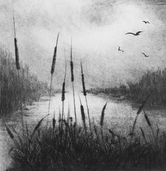 """""""Reedbeds Evening ll"""" Unique Drypoint & Monoprint by Angela Brookes """"Having worked with clay for most of my professional life, I now find my printmaking work is foremost in my practice. My interest centres mostly on the natural world. I frequently. Landscape Pencil Drawings, Landscape Sketch, Pencil Art Drawings, Drawing Scenery, Nature Drawing, Art Drawings Sketches Simple, Beautiful Drawings, Charcoal Sketch, Charcoal Drawing"""