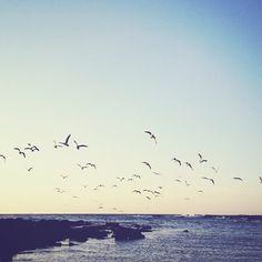 A few minutes, a few miles. Little Bay Beach. Instagram: @wearehandsome