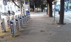 Lecce viale Oronzo Quarta: buche dossi e alberi non potati