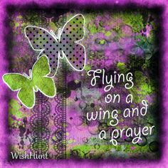 Flying on a wing and a prayer