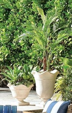 These sophisticated planters feature beautiful stone composite construction. Ideal for adding a classical and functional accent to your home or garden. Planters, Cleaning Wipes, Stone, Indoor, Greenery, Water, Beautiful, Backyard, Gardening