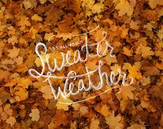 sweater weather <3