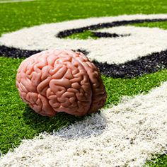 Inside the Lab That Studies NFL Brains