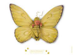 Butterfly Baby | Anne Geddes