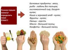 Размер имеет значение! Какими должны быть порции - инфографика | Журнал СахарОК - все о диабете