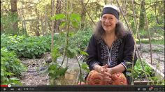 Hops Medicine video with Susun Weed!
