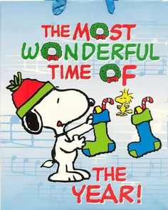 The Most Wonderful Time of The Year - Snoopy and Woodstock Hanging Christmas Stockings! Merry Christmas Wishes Quotes, Christmas Quotes, Christmas Pictures, Holiday Sayings, Christmas Greetings, Holiday Cards, Peanuts Christmas, Charlie Brown Christmas, Christmas Time
