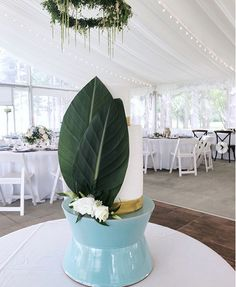 Chair Cover Rentals Madison Wi Swing Garden B&m 96 Best Decor Images In 2019 Diy Wedding Stand Cake Blue