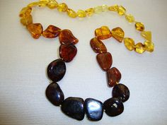 Amber Baltic Many Colored Natural Freeform