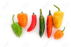 8926058-mixed-chili-Habanero-Serrano-hot-mexican-peppers-Stock-Photo.jpg (1300×866)