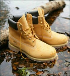 Tims!