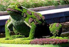 10 Amazing Animal Bush Sculptures - My Modern Metropolis