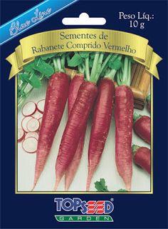 Projeto Verdejar ¨Ser verde,tornar-se verde: Cultivo do rabanete comprido vermelho.