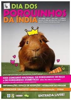 o Jornal do C.A.P.I.: Dia dos Porquinhos da india 2013