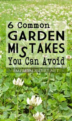 6 Common garden mistakes you can avoid at empressofdirt.net/common-gardening-mistakes/