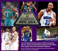 Image detail for -Charlotte Hornets NC