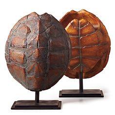 Tortoise Shell Natural Pair - Decorating Bookshelves - Southern Living