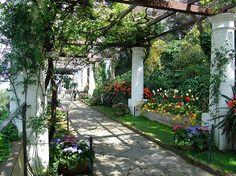 Pergola In Villa San Michele Anacapri NA