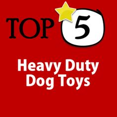 5 heavy duty dog toys for your aggressive chewer.