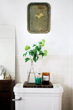 plant clipping in bathroom