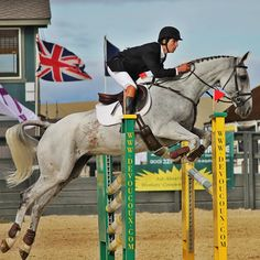 """""""Grand Meadows supplements have transformed my horse's coat and kept her healthy and therefore allowed her to perform at her best! These supplements can't be beat in my opinion, they work and at a great price!"""" - Zachary Brandt, 3-Day Eventing Champion"""