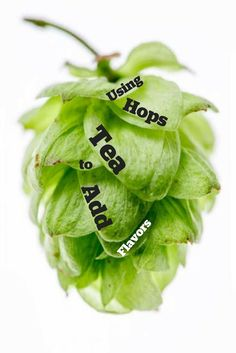 Enhance hop flavors with hop tea!