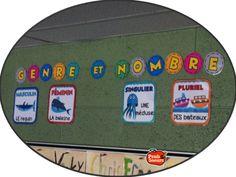 Le genre et le nombre sur affiches dans la classe