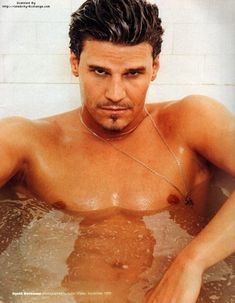 David B - David Boreanaz Photo (7947704) - Fanpop