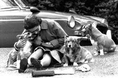 Bild zu Königliche Familie England mit Hund http://web.de/magazine/unterhaltung/adel/queen-elizabeth-ii-regentschaft-zahlen-30904028