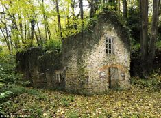 An old run down building in the woods to help illustrate the Bandolier Mill in Complication.