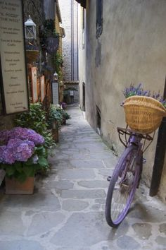 Side street in Cortona, Italy Heading here in a few days to see the land of the beautiful Tuscan Sun and to help promote by Frances Mayes Beautiful World, Beautiful Places, Beautiful Pictures, Beautiful Flowers, Places To Travel, Places To See, Places Around The World, Around The Worlds, Toscana Italia