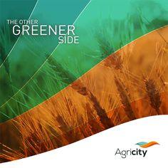 Agricity Brochure Design on Behance