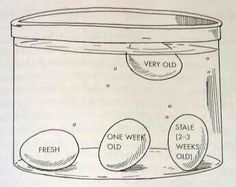 interesting helpful lifehacks 29 Life hacks, helpful hints, pro tips; whatever you call em, theyre worth a try Photos) Simple Life Hacks, Useful Life Hacks, Lifehacks, Chefs, Egg Test, Egg Float Test, Bad Eggs Test, Crazy Kitchen, Kitchen Tips