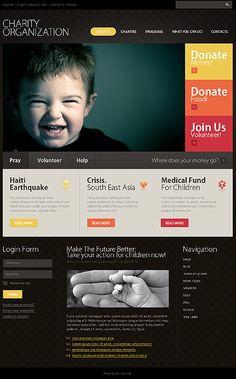 Charity Organization Flash Joomla Theme
