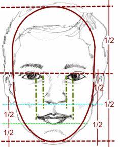 proporção do rosto