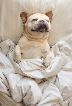 Sundays are for sleeping in